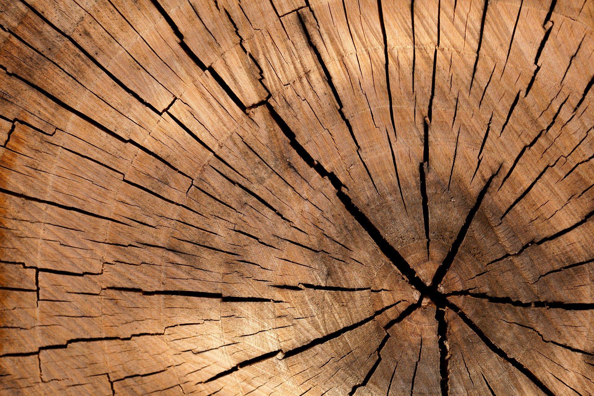 Extraordinaire Woodworks LLC